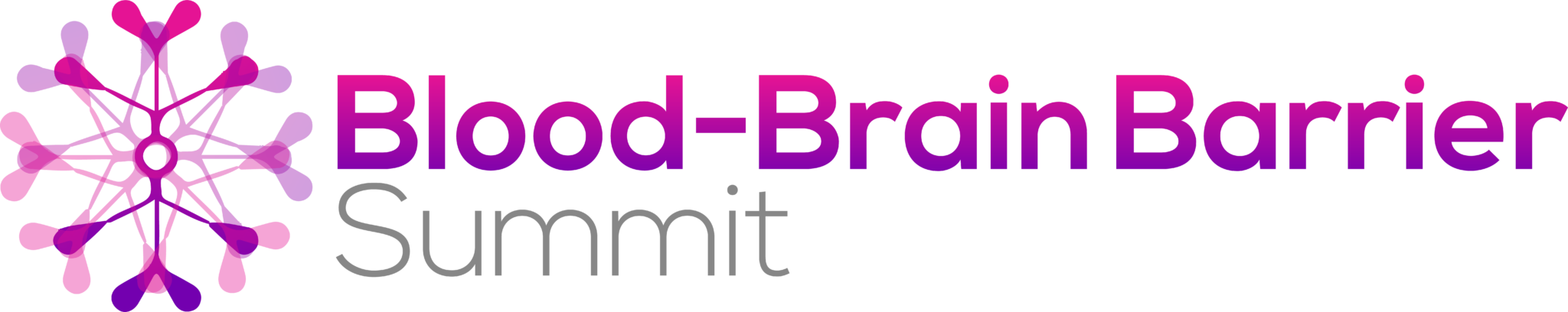 Blood-Brain Barrier Summit 2020 logo FINAL